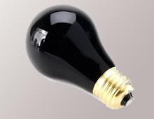 bola-lampu